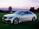 Mercedes-Benz S class 用パーツ 『WALD W222 BLACK BISON 3点キット』 商品イメージ